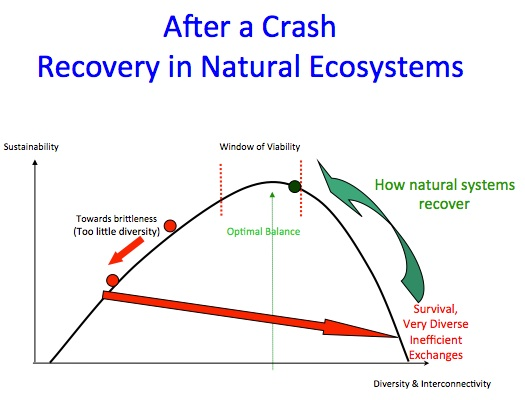 Source: Lietaer & Dunne (authors of Rethinking Money) - powerpoint slides during Madison, WI workshop, 4/2013